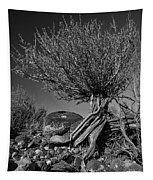 Twisted Beauty - Bw Tapestry