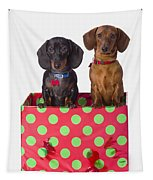 Two Dachshund Puppies Inside A Polka Tapestry