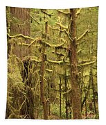 Waltzing In The Rainforest Tapestry