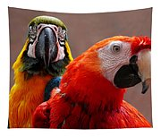 Two Parrots Closeup Tapestry