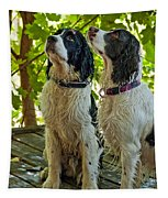 Two Wet Puppies Tapestry