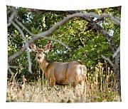Utah Mule Deer Tapestry