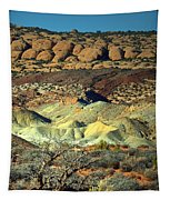 Varying Landscape Tapestry