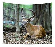 Velvet Buck At Rest  Tapestry