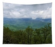 View From The Parkway Tapestry