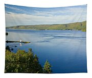 View Of Boulardarie Island From Seal Tapestry