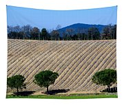 Vineyard On A Hill With Trees Tapestry