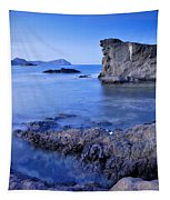 Volcanic Reef Tapestry