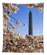 Washington Monument Cherry Trees Tapestry