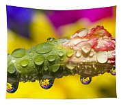 Water Drops On A Budding Flower Tapestry