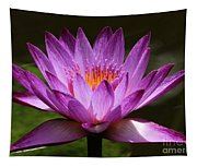 Water Lily Blossom Tapestry