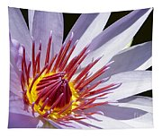 Water Lily Soaking Up The Sun Light Tapestry