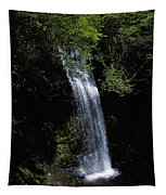 Waterfall In A Forest, Glencar Tapestry