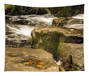 Waterfall In Fall Tapestry