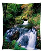 Waterfall In The Woods, Ireland Tapestry