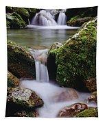 Waterfall, Peter Lougheed Provincial Tapestry