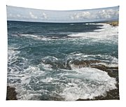 Waves Breaking On Shore  7918 Tapestry