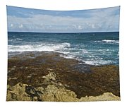 Waves Breaking On Shore 7930 Tapestry