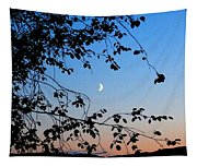 Waxing Crescent Moon Tapestry