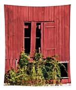 Weathered Broken Red Barn Window Of New Jersey Tapestry
