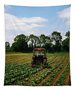 Weeding A Cabbage Field, Ireland Tapestry