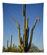 Weird Giant Saguaro Cactus With Blue Sky Tapestry
