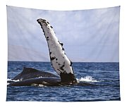 Whale Fin Above Water Tapestry
