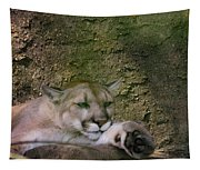 What A Paw Tapestry