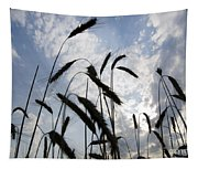 Wheat With Blue Sky Tapestry