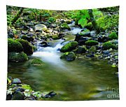 Where The Simple Water Runs  Tapestry