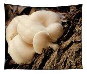 White Cloud Mushrooms Tapestry