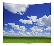 White Clouds In The Sky And Green Meadow Tapestry