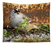 White Crowned Sparrow Tapestry