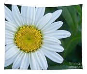 White Daisy Tapestry