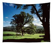 White Horse At Powerscourt, Co Wicklow Tapestry