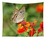 White Peacock Butterfly Tapestry