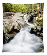White Water Tapestry