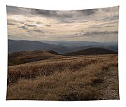 Whitetop Mountain Virginia Tapestry