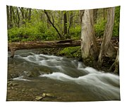 Whitewater River Spring 18 Tapestry