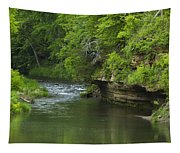 Whitewater River Spring 5 B Tapestry