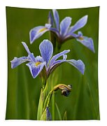 Wild Blue Flag Iris Tapestry
