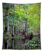 Wild Florida - Hillsborough River Tapestry
