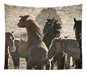 Wild Horse Battle Tapestry