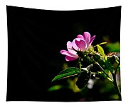 Wild Rose Along Galls Creek Tapestry