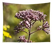 Wildflower Tapestry