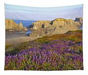 Wildflowers And Rock Formations Along Tapestry