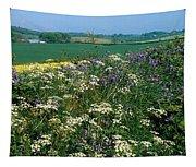 Wildflowers, Near Seaforde, Co Down Tapestry