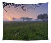 Wildflowers On A Foggy Pasture Tapestry