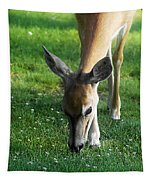Wildlife Beauty Tapestry