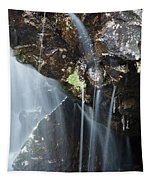 Willey Brook - White Mountains New Hampshire  Tapestry